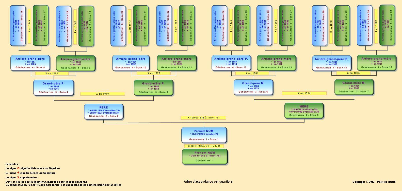 Arbres Genealogiques Ascendance Et Descendance